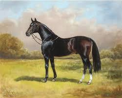horse painting black english horse by irek szelag