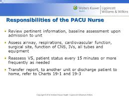 Pacu Nurse Charting Chapter 17 Preoperative Nursing Management Ppt Video