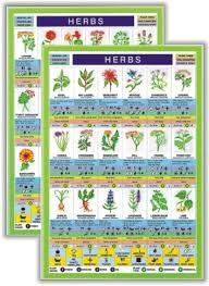 Herbs Mini Chart