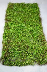 Moss Mats Leaf Mat Green 16 X36