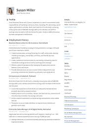 Profile Example Resume Small Business Owner Resume Writing Guide Resumeviking Com