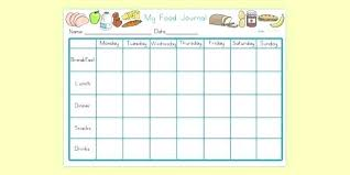 Food Journal Online My Food Journal Template Daily Food Journal Template Weight