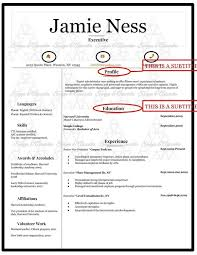 What Is Resume Awesome What Is Resume Cv April Onthemarch Co Examples Printable 60 Jreveal