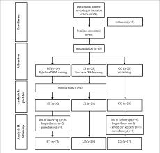 Ht Chart Flow Chart Of The Study Design Wm Working Memory Ht High