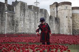 yeoman serjeant bob loughlin walks amongst the art installation blood swept lands and seas of red marking the anniversary of the world war one at the