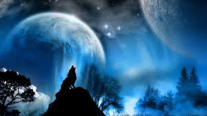 howling wolf wallpaper. Fine Wolf Howling Wolf Wallpaper Phone With HD Desktop 1920x1080 Px 34557 KB For F