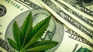 Como investir (e lucrar) legalmente em maconha - Seu Dinheiro