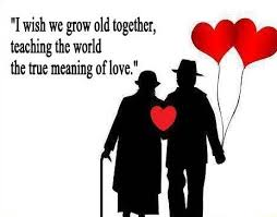 Old Together Love Quote Magnificent Old Love Quotes