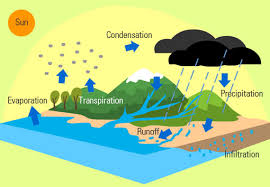 the water cyclethe water cycle for kids