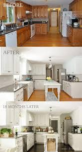 Painting kitchen cabinet in oak