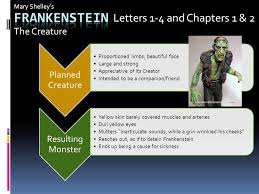 Frankenstein Letters 1 4 and Chapters 1 & 2 The Creature