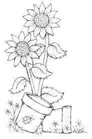 Pin Di Roberta Monacchia Su Digi Stamp Girasoli Disegno Fiori E