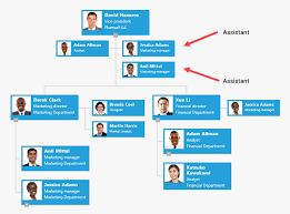 Dotted Line Org Chart Multiple Assistants Dotted Line Managers And New Dotted