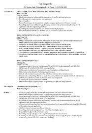 Soa Java Developer Resume Samples Velvet Jobs
