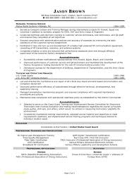 Resume Professional Summary Examples Customer Service Resume Headlines for Customer Service Download now Resume Summary 51