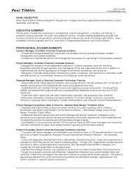 Objective For Professional Resume Social Science Resume Objective Administrative Professional Resume 20