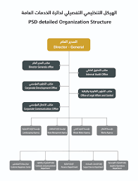 department organizational chart organizational structure