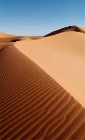 и полупустыни Пустыни и полупустыни