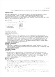Assistant Executive Director Resume Templates At
