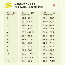 9 Month Baby Height Chart 9 Month Babybka Weight N Height Kitna Hona Chahiye