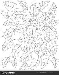 Zwart Wit Vectorillustratie Van Holly Bladeren En Bessen Pagina