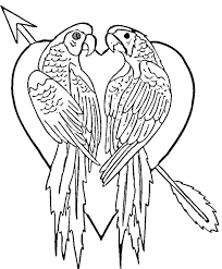 Waiting Parrot Coloring Page Flying Birds Pages Baby Printable ...