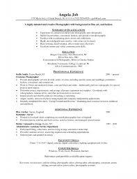 Freelance On Resume Bestresume Com