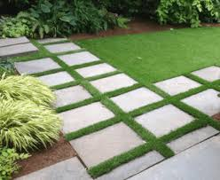 can you grow grass between pavers