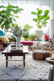 plants feng shui home layout plants. Create Lively Atmosphere Feng Shui Rules Tips For Designing A Home Plants Layout