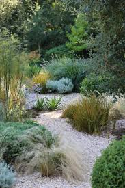 Japanese Garden Plants 25 Best Gravel Garden Ideas On Pinterest Landscape Design
