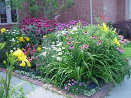 Small Picture garden ideas zone 6 garden planning foundation plantings