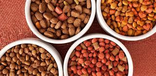 Image result for pet food