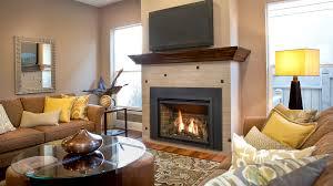 Fireplaces  Stanley C Bierlyu0027sKozy Heat Fireplace Reviews