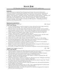 Program Manager Resume Example Free Resume Templates