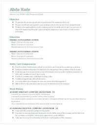 Account Executive Resume New Advertising Executive Resume Resume Pro