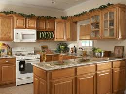Plain Kitchen Decorating Ideas On A Budget Full Size Of Cabinetsinnovative Inside Modern