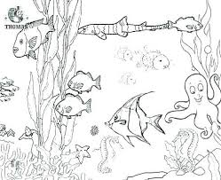 Ocean Animals Coloring Page Ocean Animals Coloring Pages For