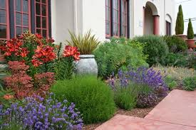 Small Picture For a waterwise landscape consider Mediterranean garden design