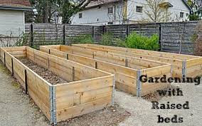 garden beds. gardening with raised beds garden