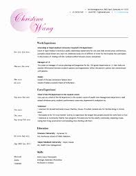 Detailed Resume Comfortable Detailed Resume Example Contemporary Entry Level 40