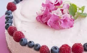 Risultati immagini per gelato yogurt frutta