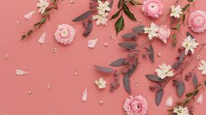 west elm pink flowers mobile wallpaper