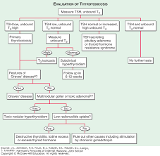 Thyroid Hormone Flow Chart View Large Accesspharmacy Mcgraw Hill Medical