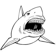 Small Picture A Realistic Drawing Of Hammerhead Shark Coloring Page Kids Play