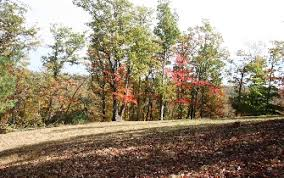 1 Elk Ridge Rd. Ferguson NC 28624 Leatherwood Mountain 10 Acres With Big  Views - Mountain Property Brokerage