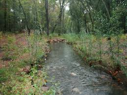 Bayland Consultants Designers Inc North Branch Of Cypress Creek Clear Creeks Consulting