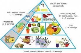 food pyramid 2014. Modren Food Australian Food Pyramid 2014 Throughout Food Pyramid E