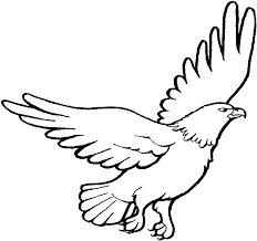 Small Picture philippine eagle perched on a branch harpy eagle coloring pages