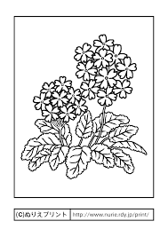 サクラソウ主線黒春の花無料塗り絵イラストぬりえプリント