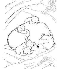 Small Picture Sleeping Bear Coloring Page Coloring Home
